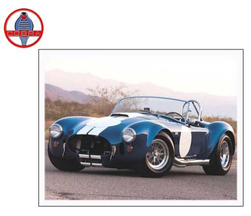 Ac Cobra Parts Catalog – Name